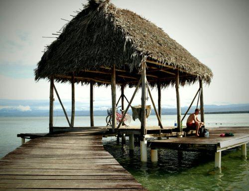 The Bocas Effect…