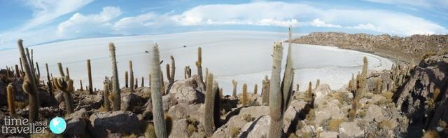Fish Island, Salt Flats Bolivia